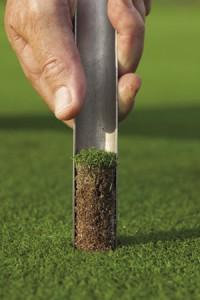 Soil Sample for Web