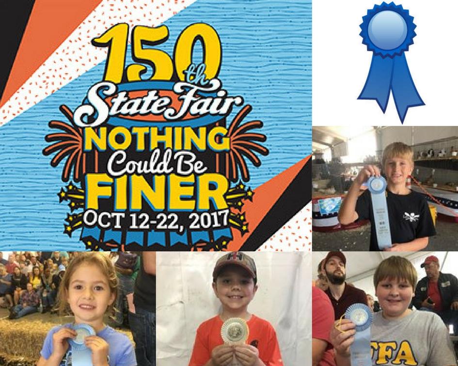 NC State Fair poster
