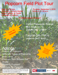 Popcorn Field Plot Flyer
