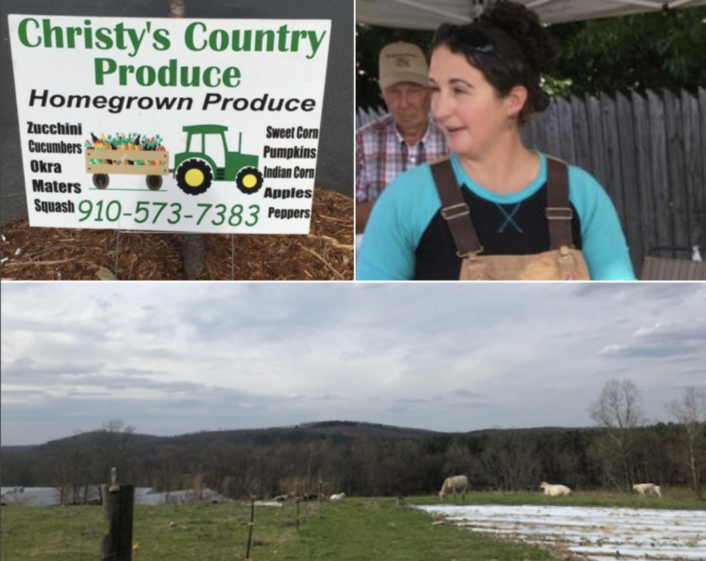 Scenes From Christy's Country Produce