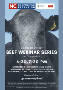 Cover photo for Beef Cattle Webinar Series
