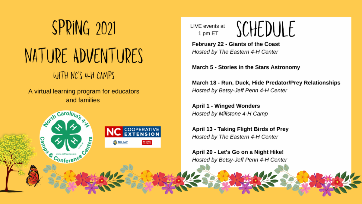 Nature Adventures flyer