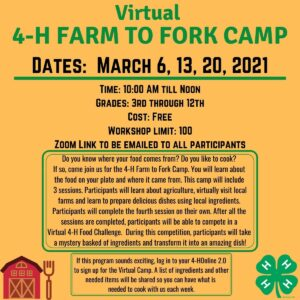 Cover photo for Virtual 4-H Farm to Fork Camp