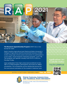 Cover photo for Scholarship Opportunity: N.C. A&T State University Virtual Research Internship