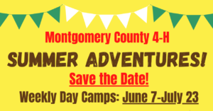 Cover photo for 4-H Summer Adventures in-Person Day Camp!