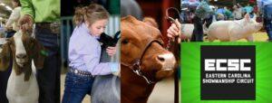 Cover photo for Eastern Carolina Showmanship Circuit 2021 Dates