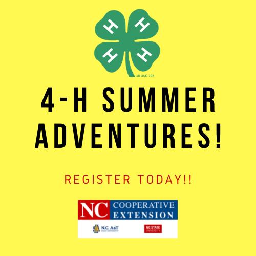 4-H Summer Adventures flyer image