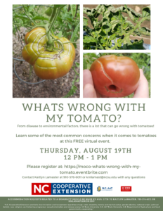 Cover photo for What's Wrong With My Tomato?